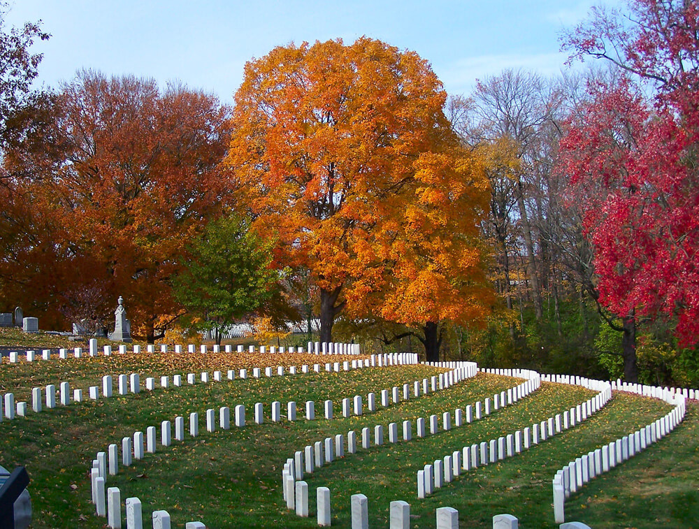 Rows of soliders' tombstones with a backdrop of trees in the fall at Cave Hill Cemetery in Louisville, KY.