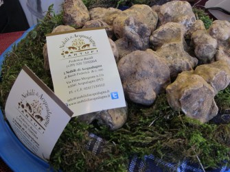 Winter (white) truffle --the more expensive one