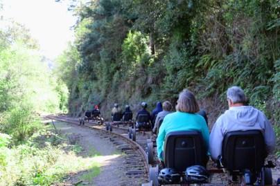 Skunk Train Rail Bikes going into the redwoods.