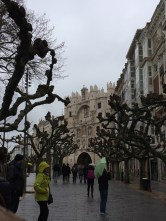 Burgos, with the same weird leaf-less trees as Santander