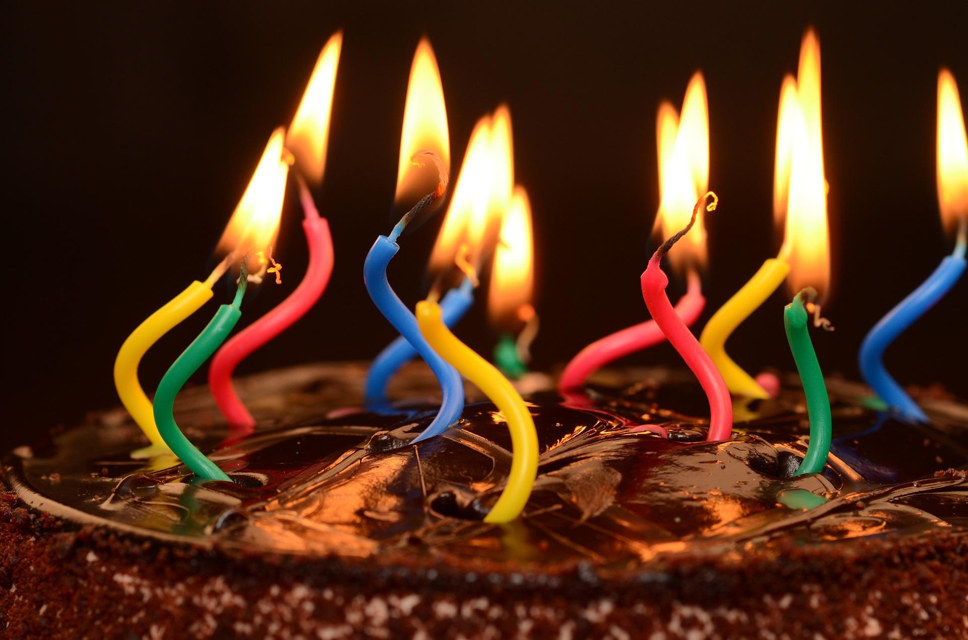 Celebrating one year