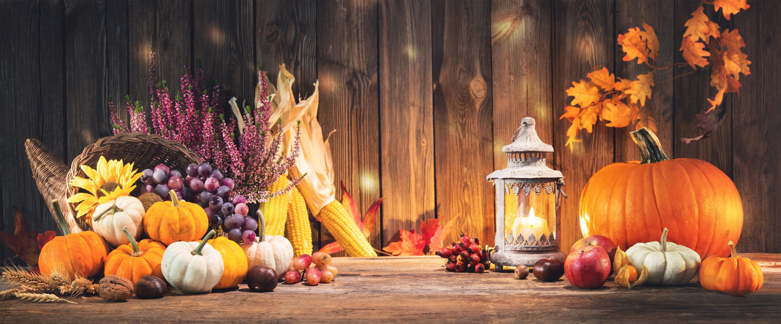 Thanksgiving and thinking with the Church