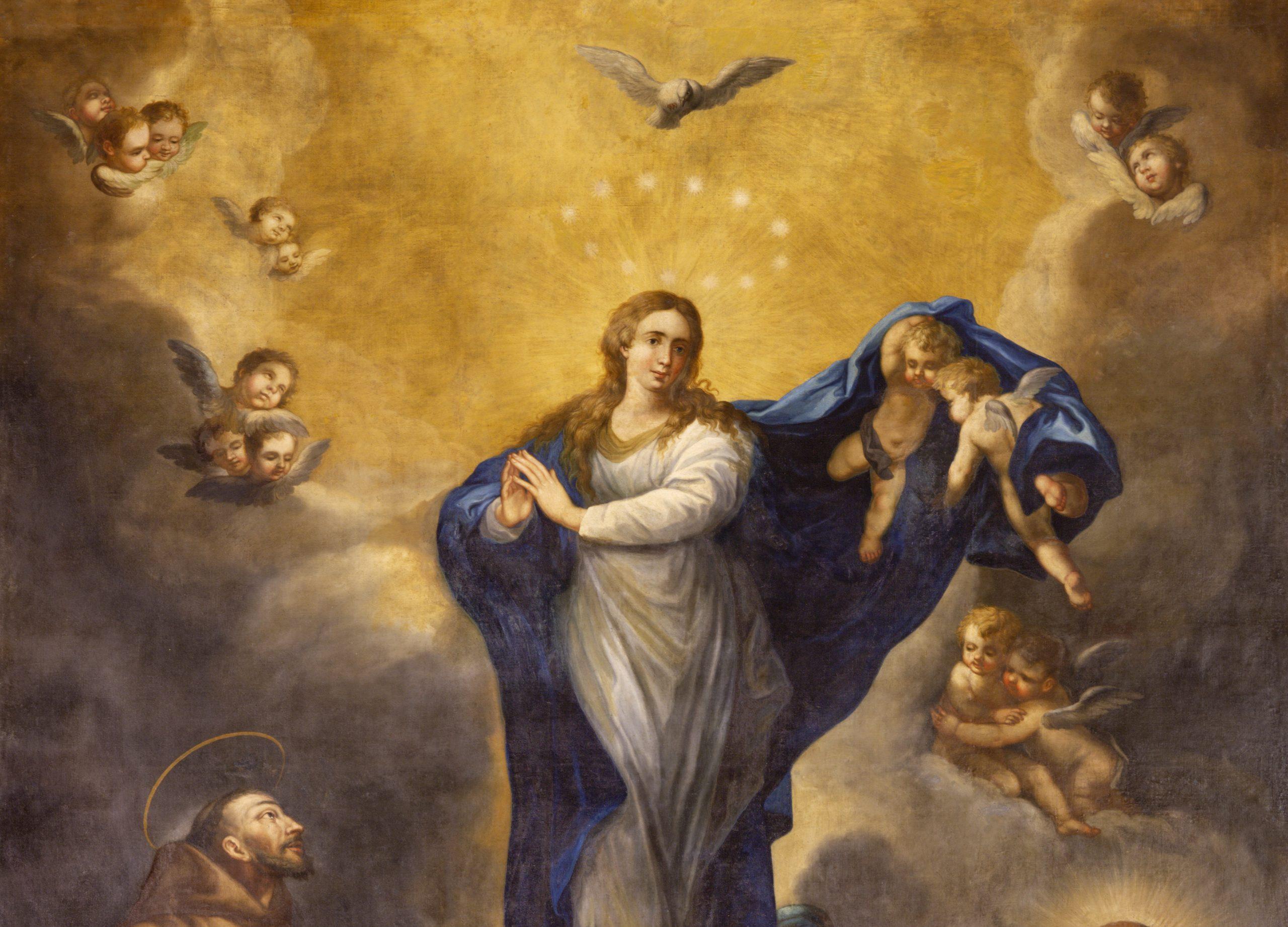 Who Art Thou, O Immaculata?