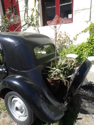 Way to repurpose. Vintage cars become planters.