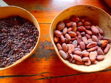 On the left are chocolate nibs (which have no sugar and taste awful) on the right is dried cacao.