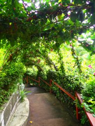 Paths around the hostel grounds.