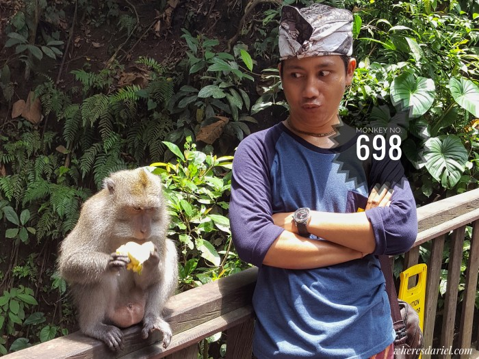 Things to do in Bali - Monkey Forest