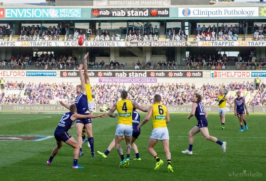 freo vs tigers AFL