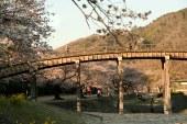 Kintai Bridge, Iwakuni