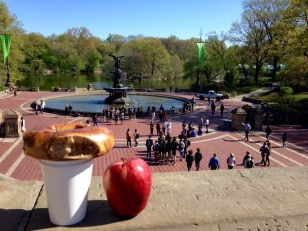 The classic NYRR road race reward - bagel, apple, and Central Park scenery.