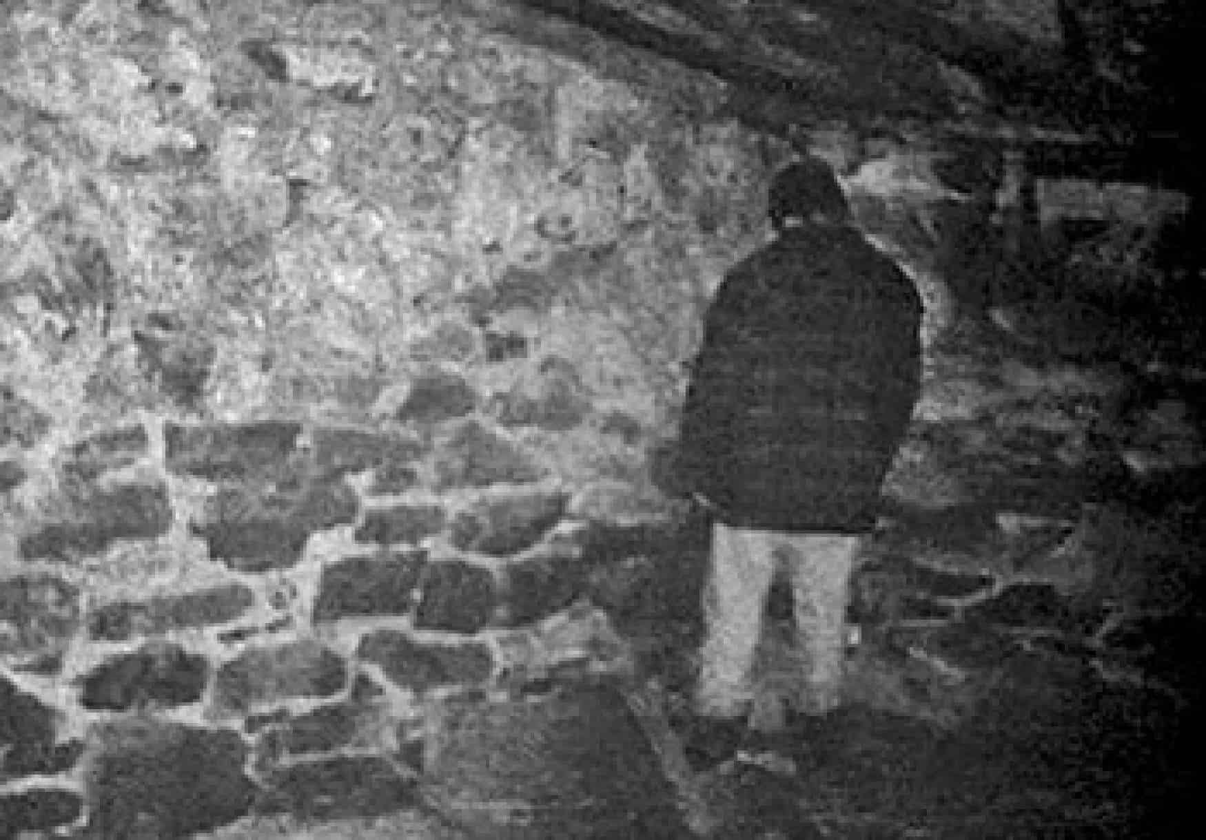 Image result for blair witch project 1999