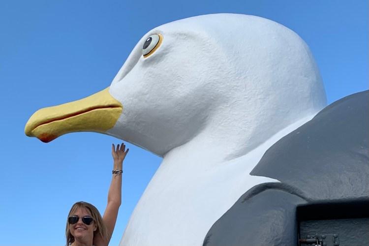 Giant seagull in Folkestone