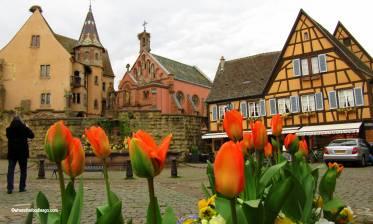 Eguisheim9