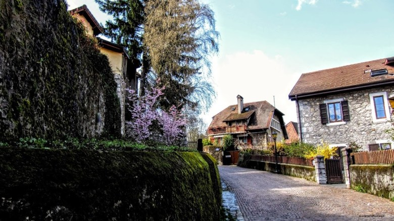 Annecy - where the foodies go 12