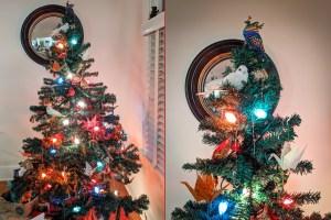 My Tree and Miscellanea