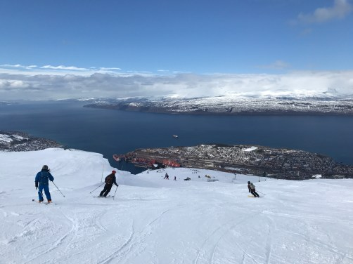 Narvikfjellet trail overlooking the city and port