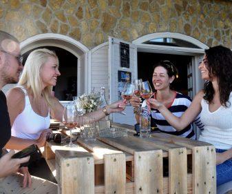 wellness and wine hungary: wine tasting tours in hungary