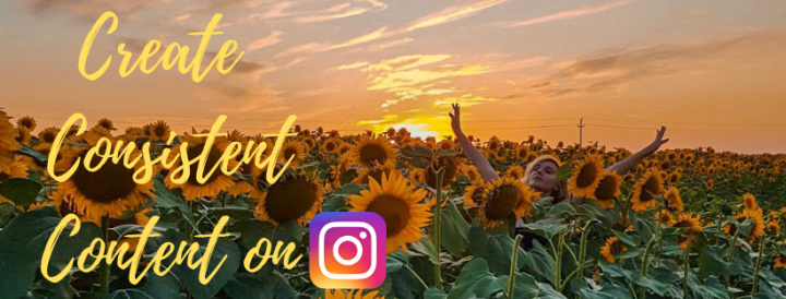 How to Create Consistent Content on Instagram