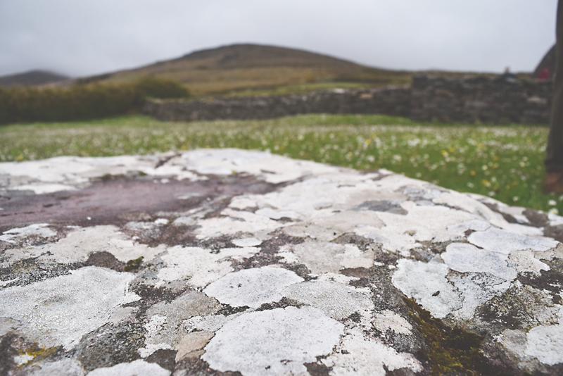 Lots-of-lichen-and-healthy-air-at-Gallarus-Oratory-Church-in-Dingle-Ireland-Mosses-Grass-Nature