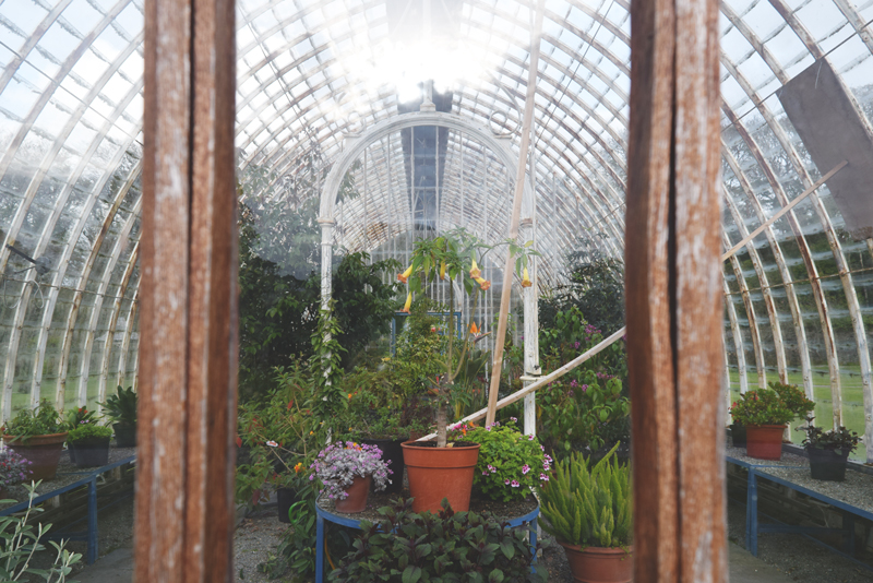 The-Greenhouse-Garden-at-Muckross-House-and-Farm-in-Killarney-National-Park-Ireland-Tour-of-Estate