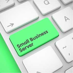 Small business web hosting