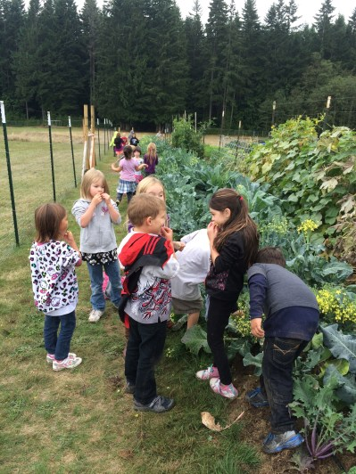 That are also a huge hit with the children. A lot of happy eaters in the garden!