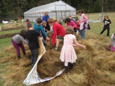 Spread more mulch and play in the hay pile