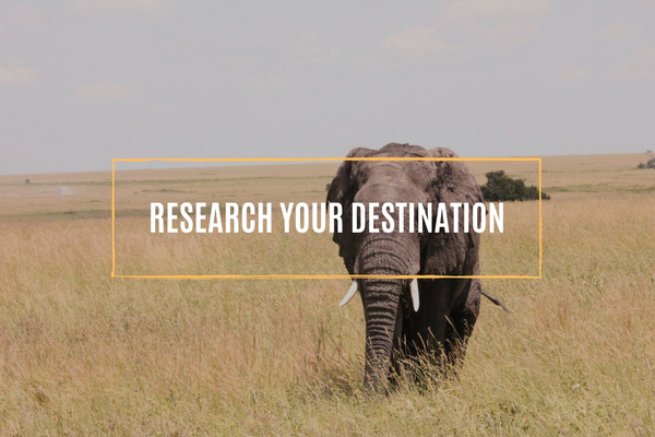 Research your destination.whileinafrica