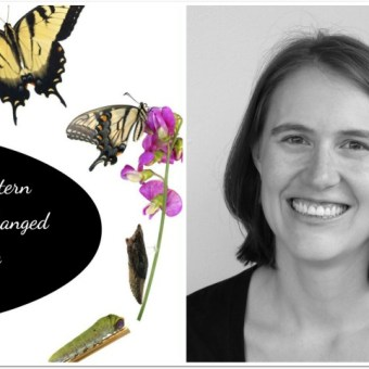 The Pattern that Changed My Life: Melissa Quaal