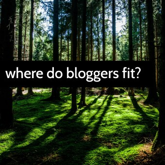 Where Do Bloggers Fit Among Established Sewing and Crafting Institutions
