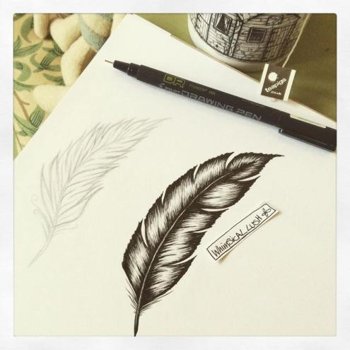 Sketching feathers...