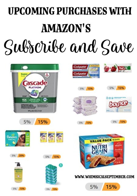 Amazon's Subscribe and Save Deals: This post shares tips to get the best deals from Amazon on household products, food, and more.