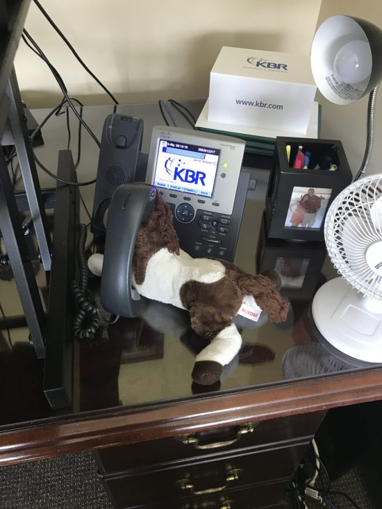 Bring a Stuffed Animal to Work Day: Grab your child's beloved stuffed animal, baby doll, etc. and take pictures of the item ....