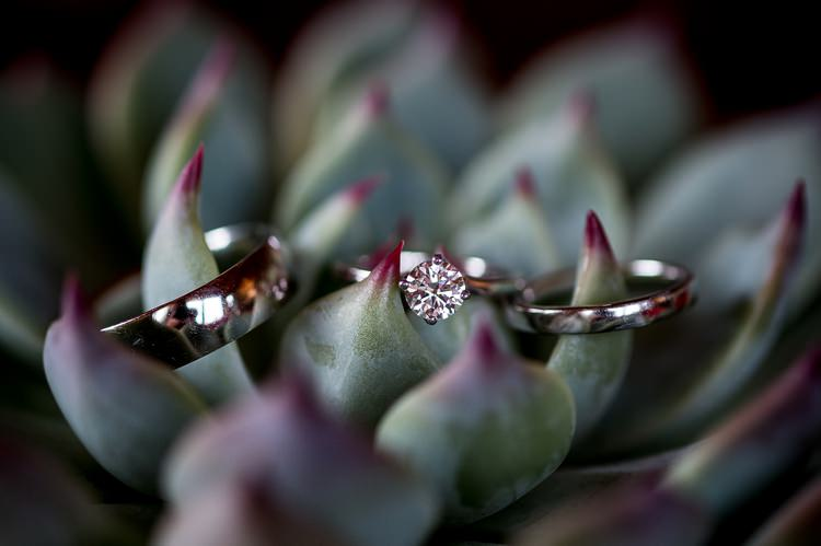 Engagement Rings Bands Mexican Inspired Colourful Cactus Wedding http://katherineashdown.co.uk/