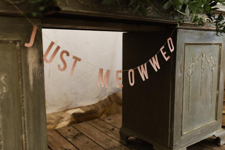 Banner Sign Fun Town Hall Countryside Gardens Cat Wedding http://www.allymphotography.com/