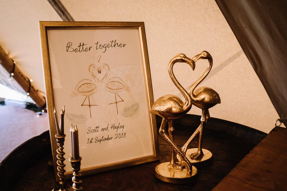 Flamingos Alcott Weddings Oobaloos Photography