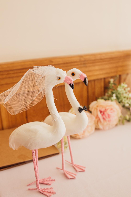 Bride Groom Flamingos Celestial Country Wedding Florence Fox Photography