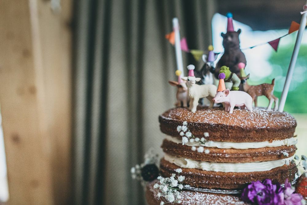Cake Topper Toy Animals Bunting Rock Village Hall Wedding Lucie Hamilton Photography