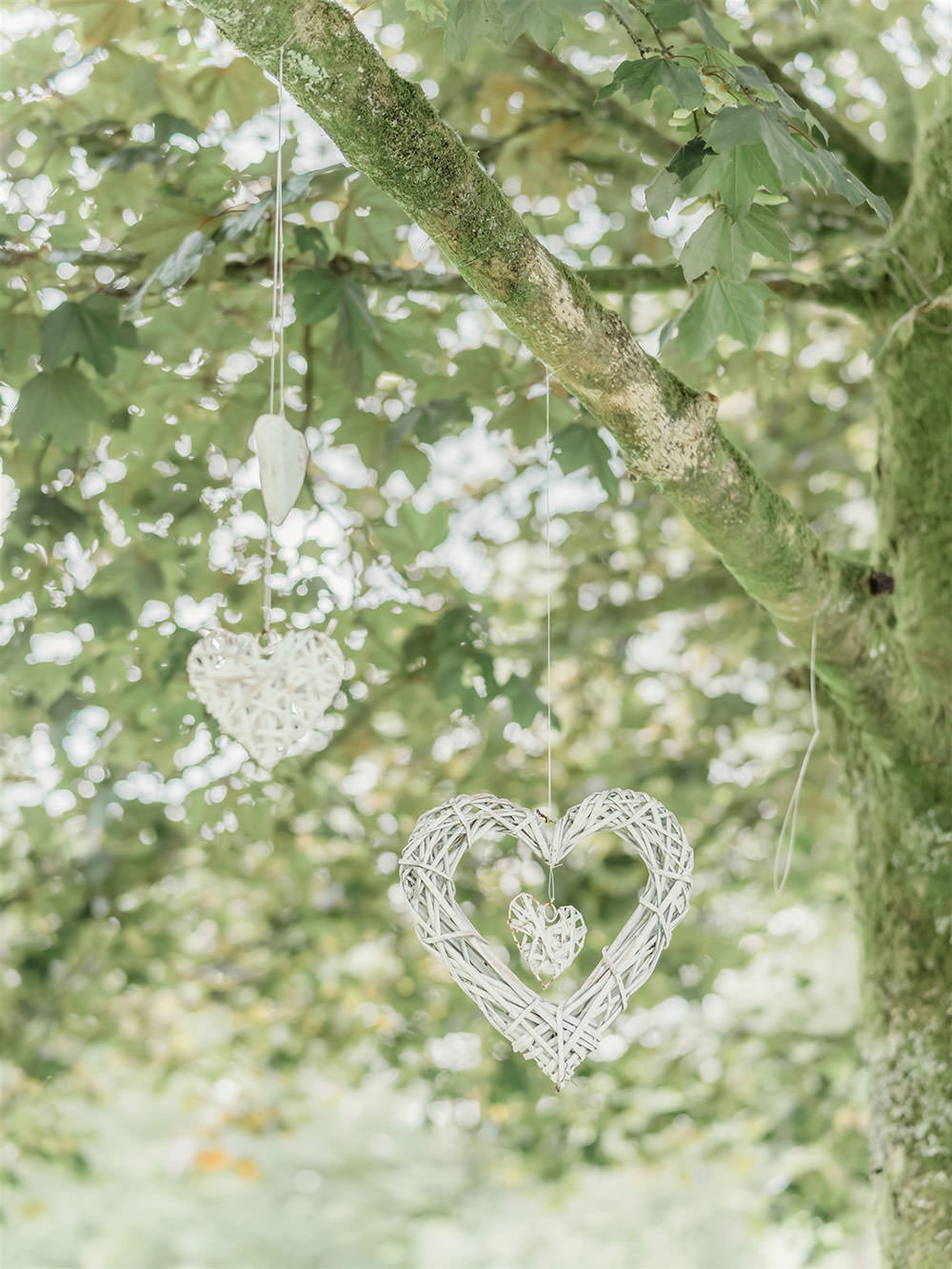Wicker Heart Hanging Surprise Wedding Carn Patrick Photography