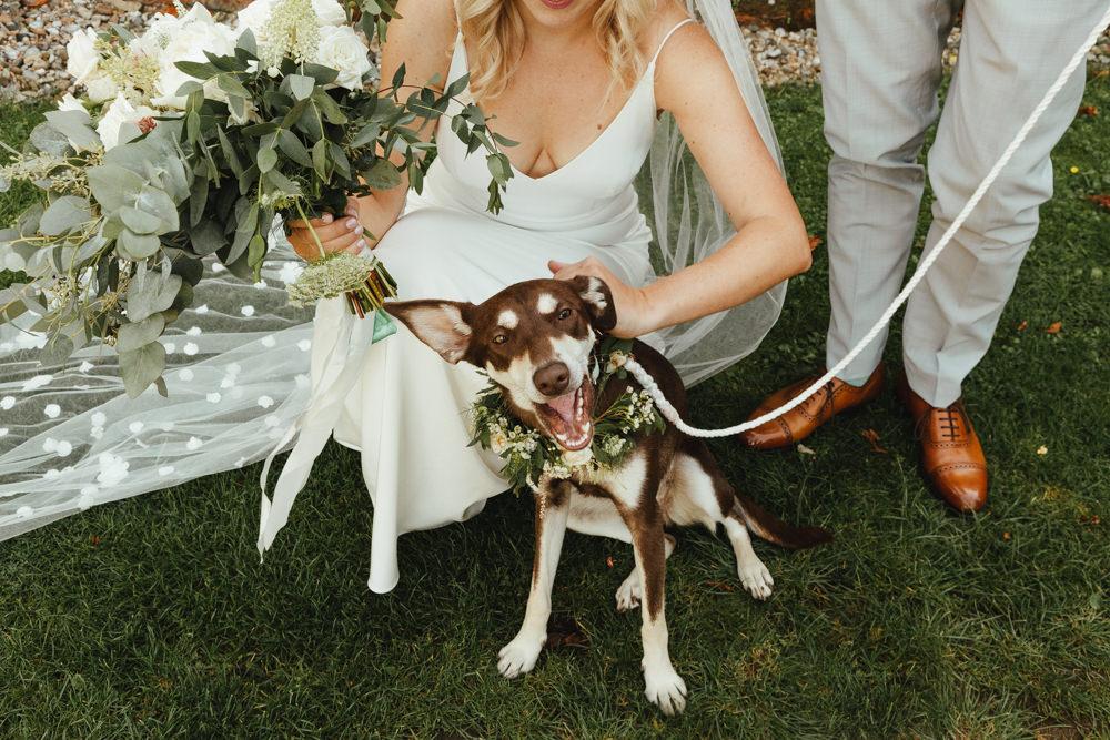 Dog Pet Flower Collar Oak Barn Wedding Matilda Delves Photography