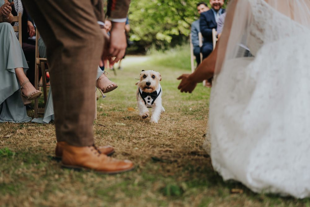 Animal Lovers Wedding Bloom Weddings