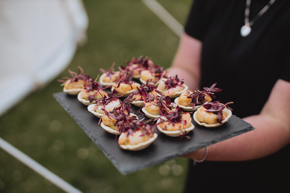 Canapes Marquee Wedding Wales Fox & Bear Photography