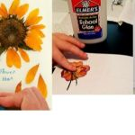 DIY Pressed Flower Journal for Kids