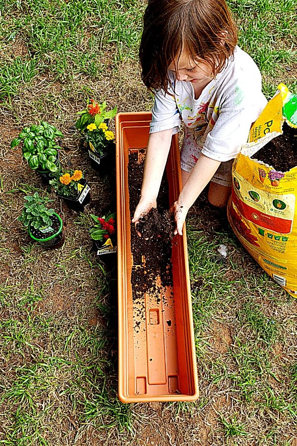 Planting a Sensory Garden