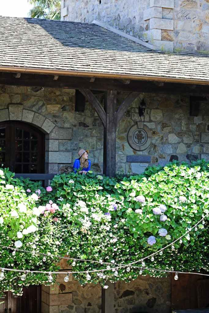 whimsy soul - napa valley 1