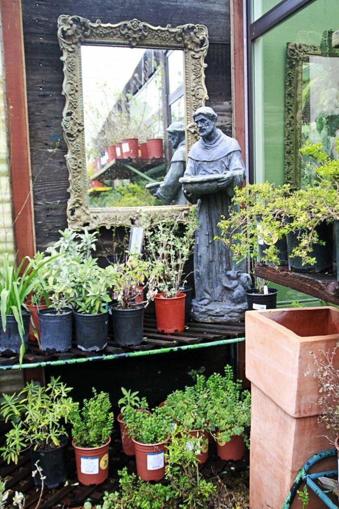 Whimsy Soul Garden Center