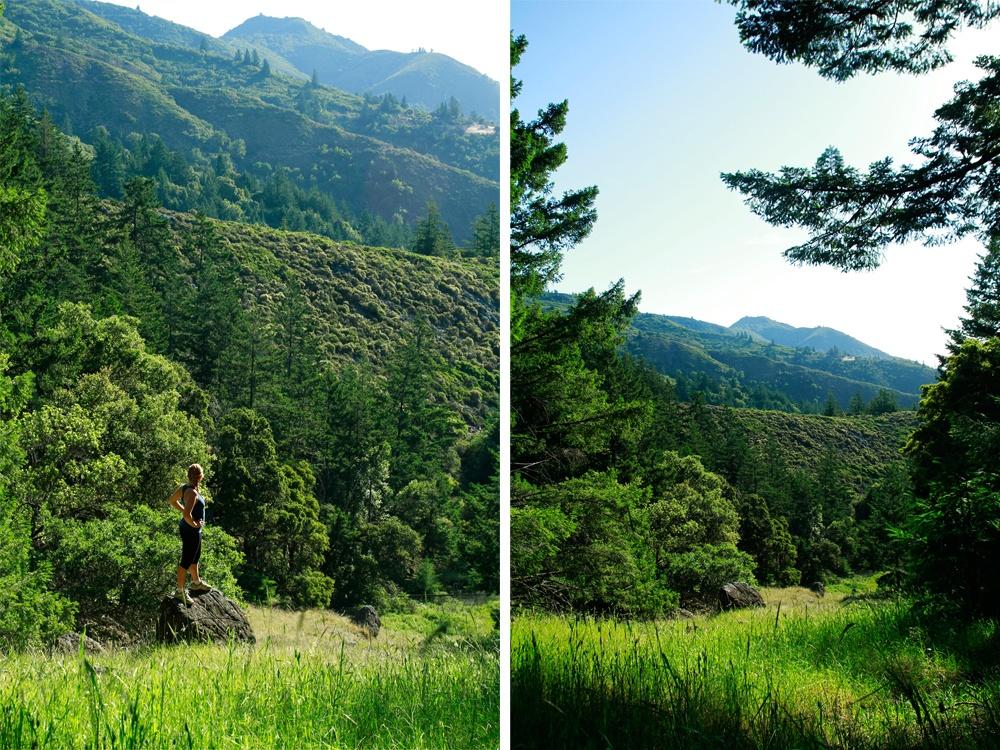 Mount Tamalpais Hiking Tips