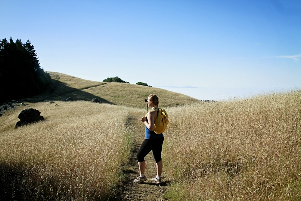 Mount Tamalpais Hiking Tips