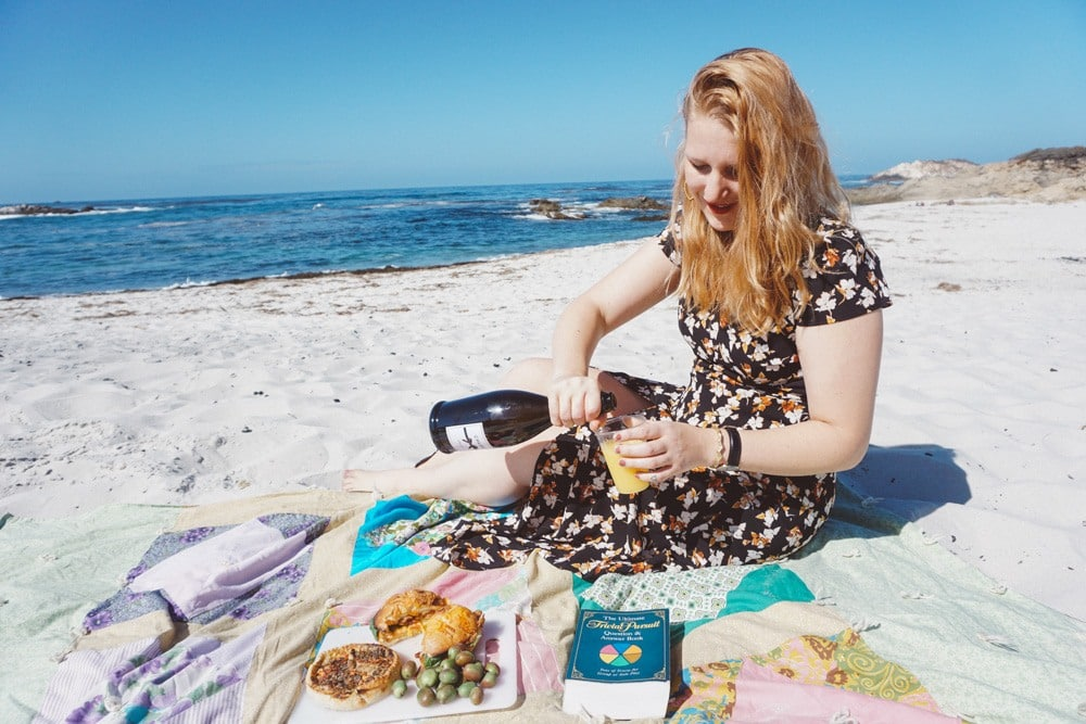Picnic on 17 Mile Drive Beach