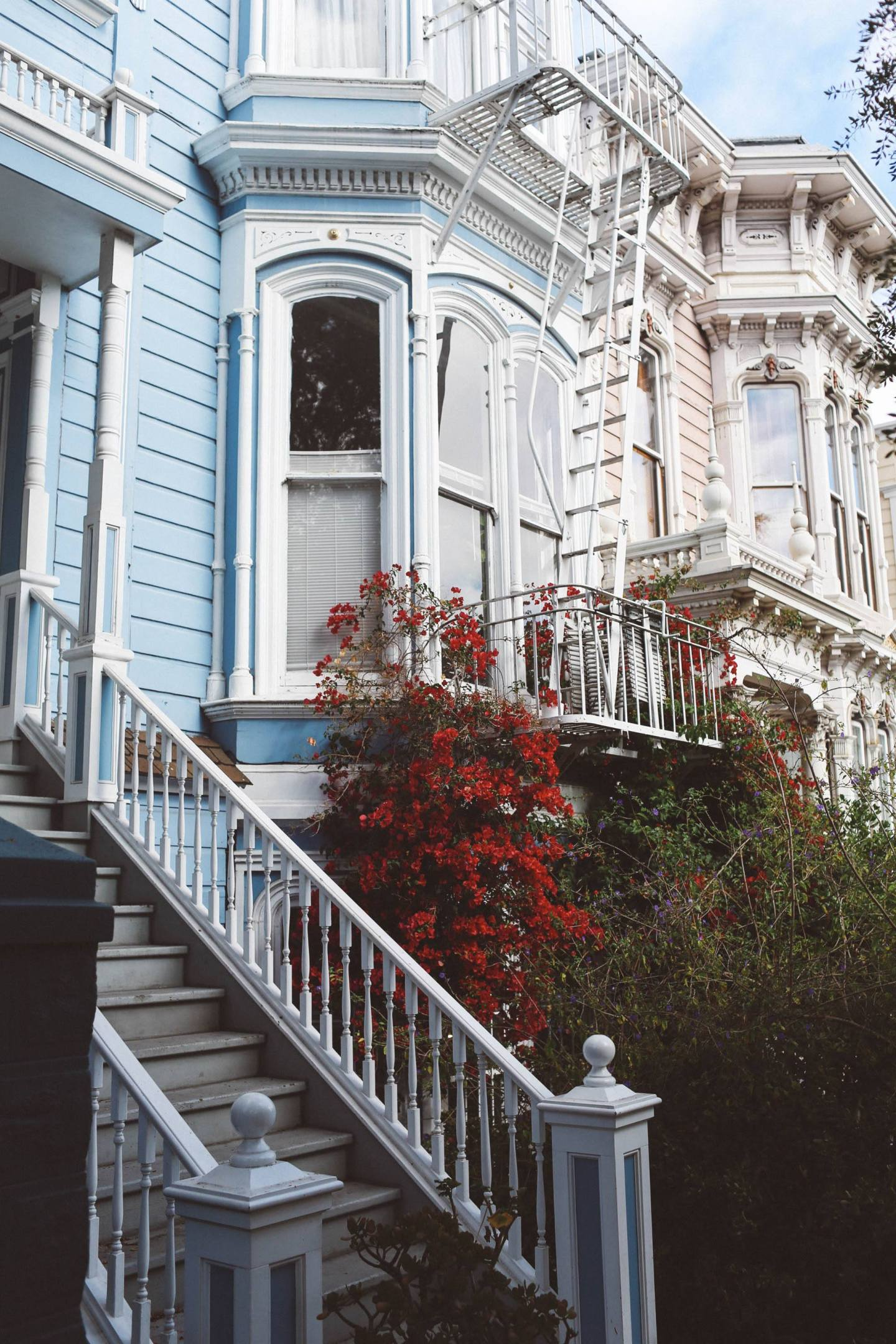 san francisco house flowers